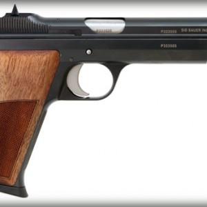 P210-Detail-R