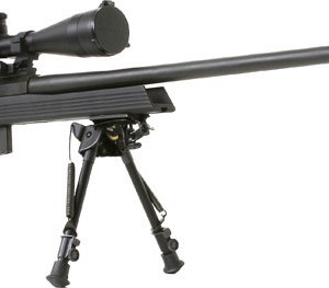 armalite30M300.tag.low_large